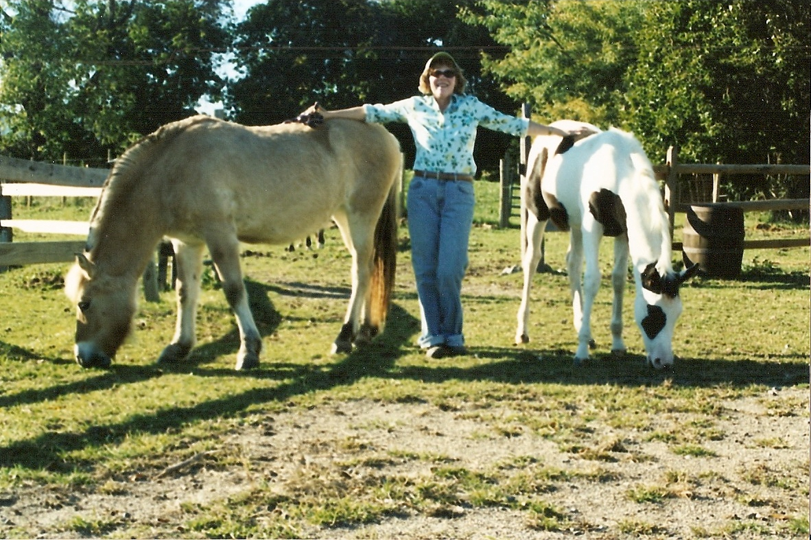 how to become a certified horse riding instructor